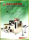 Auto Slitting & Cutting Machine